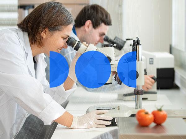 doctorado biotecnologia
